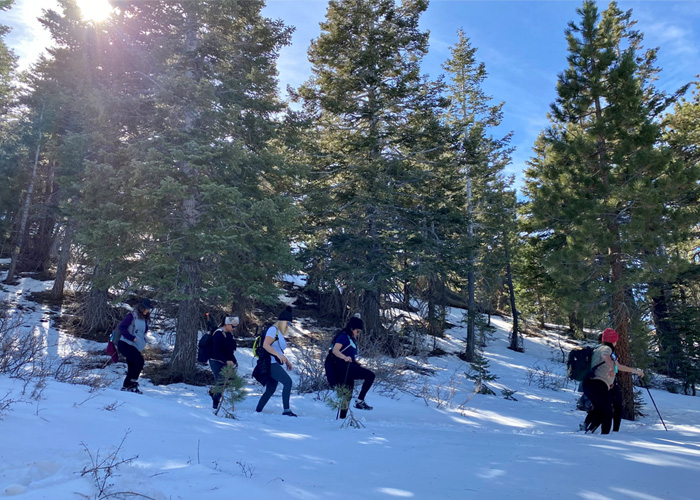 Snow Hike 2020